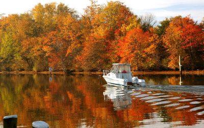 Nyhetsbrev 39 – Höstuppdatering från Båtfolket